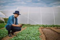 5 inovações tecnológicas que devem mudar nossas vidas nos próximos 5 anos, segundo a IBM